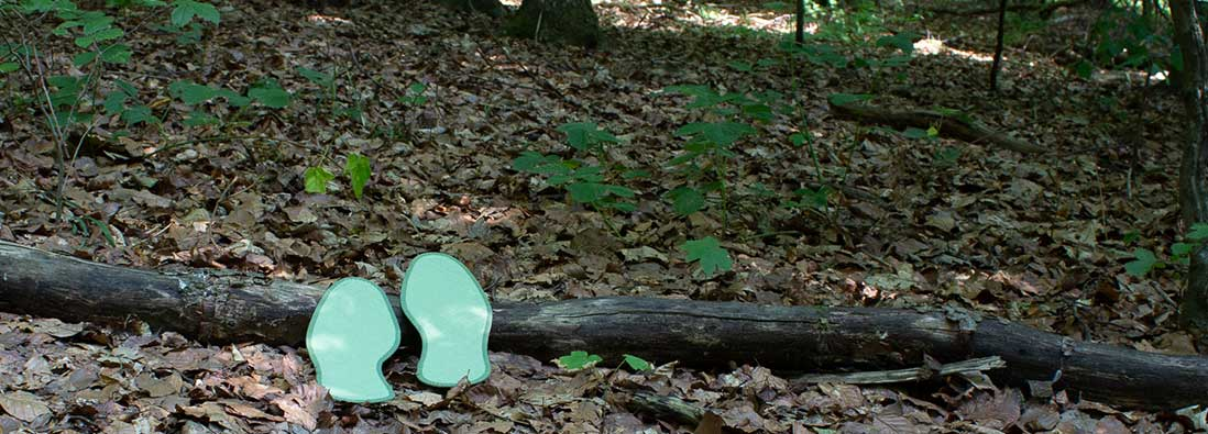 Einlegesohlen Waldläufer